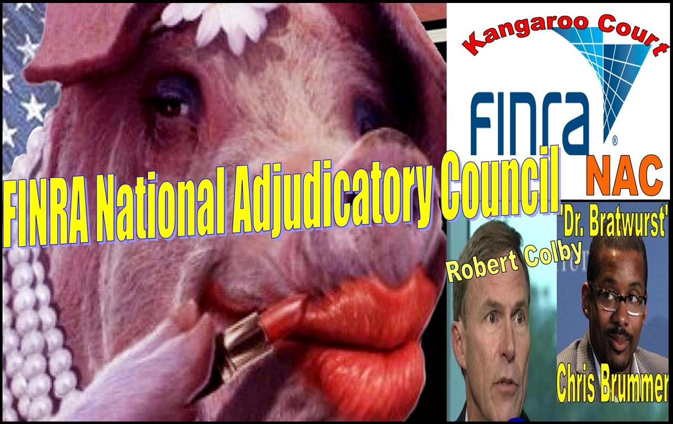 FINRA NAC, FINRA NATIONAL ADJUDICATORY COUNCIL, CHRIS BRUMMER, ROBERT COLBY, FRAUD, CHERYL CRUMPTON.pub